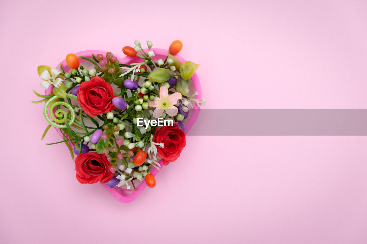 Close-up of flowers against pink background