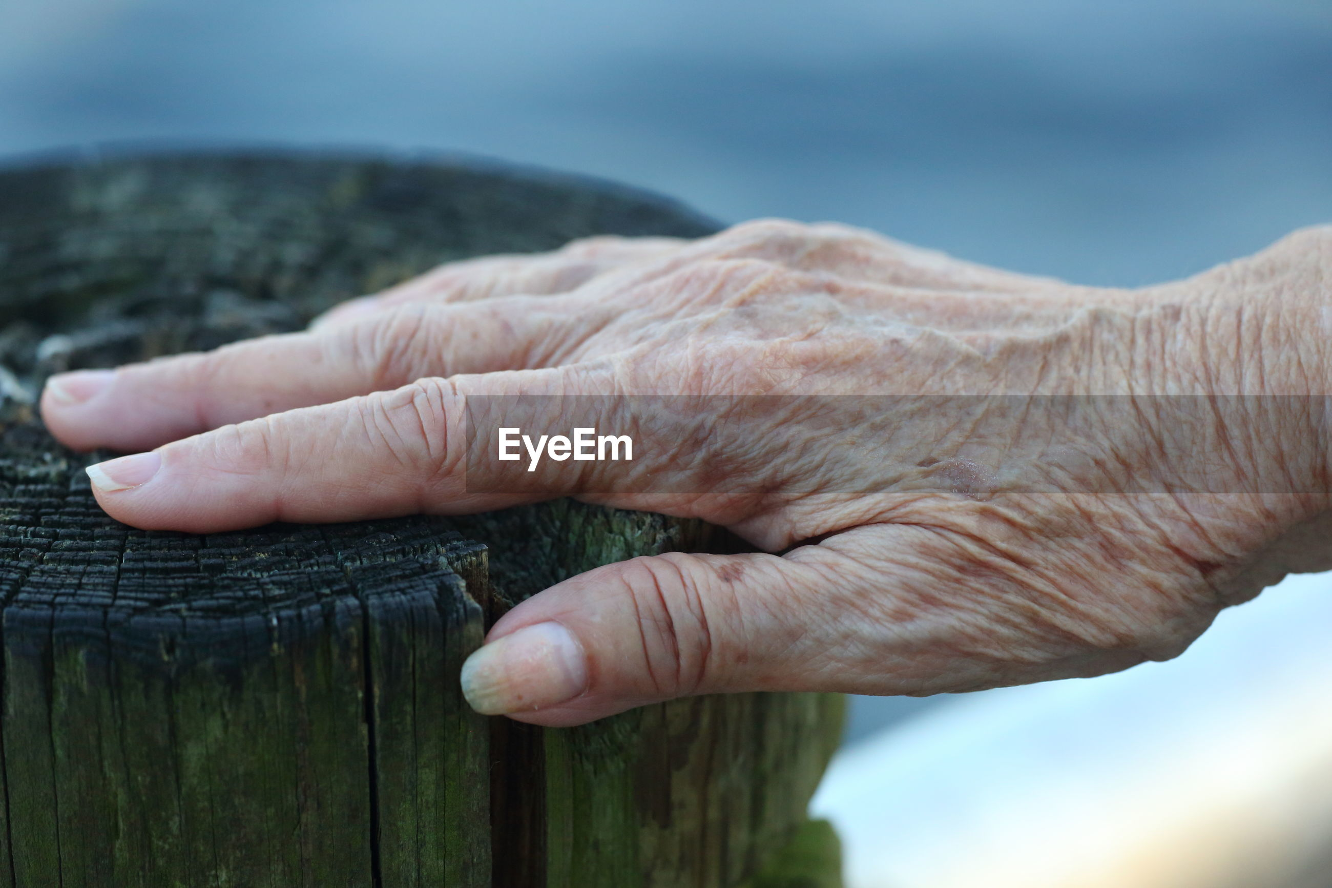 Close-up of wrinkled hand on wood