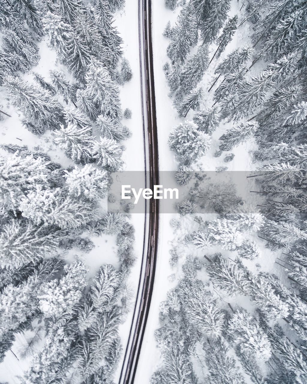 Aerial View Of Road Amidst Snow Covered Trees In Forest