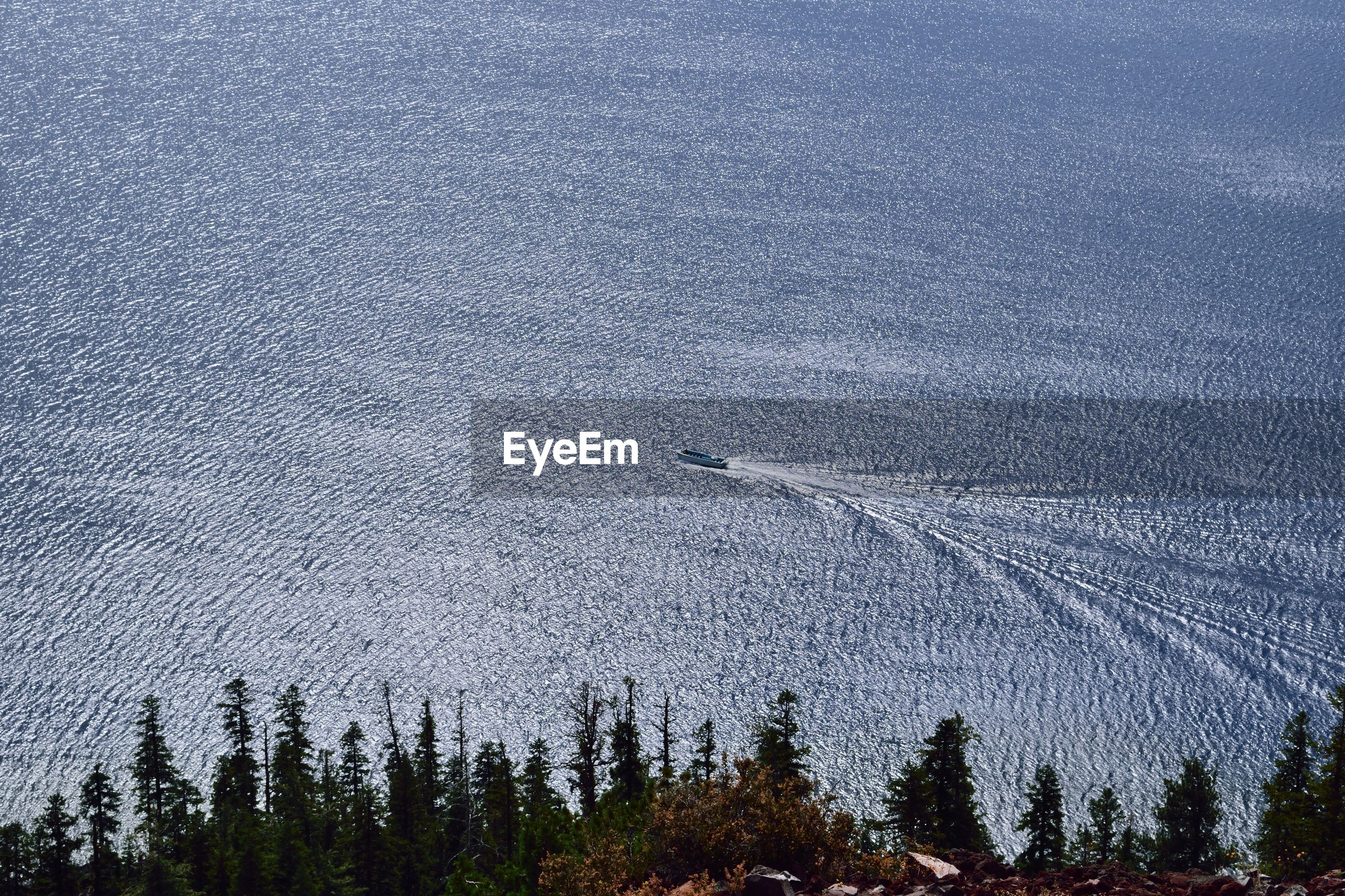 HIGH ANGLE VIEW OF TREES AT SEA