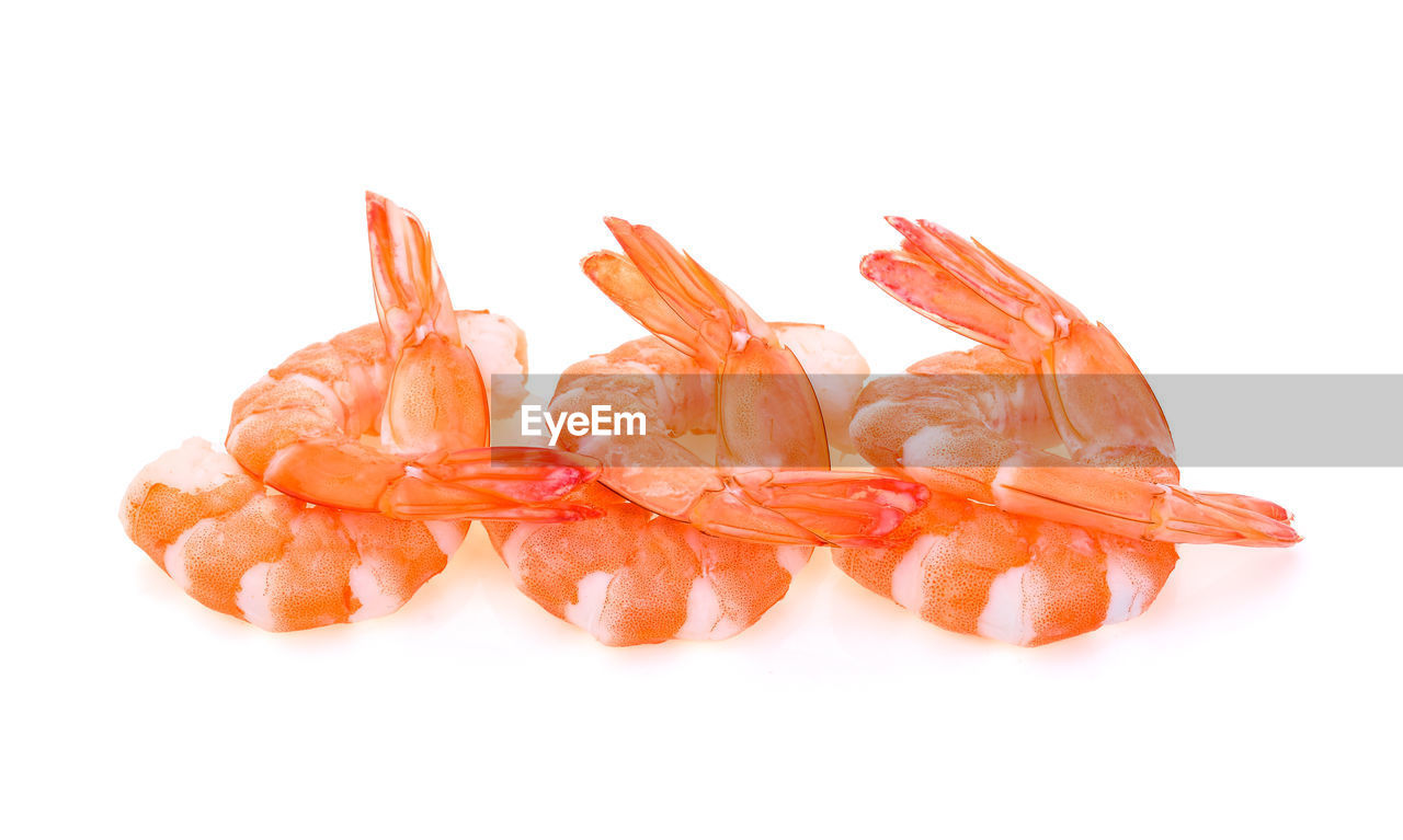 white background, food, food and drink, freshness, indoors, still life, close-up, studio shot, copy space, no people, cut out, healthy eating, wellbeing, orange color, group of objects, seafood, vegetable, meat, fruit, shrimp - seafood