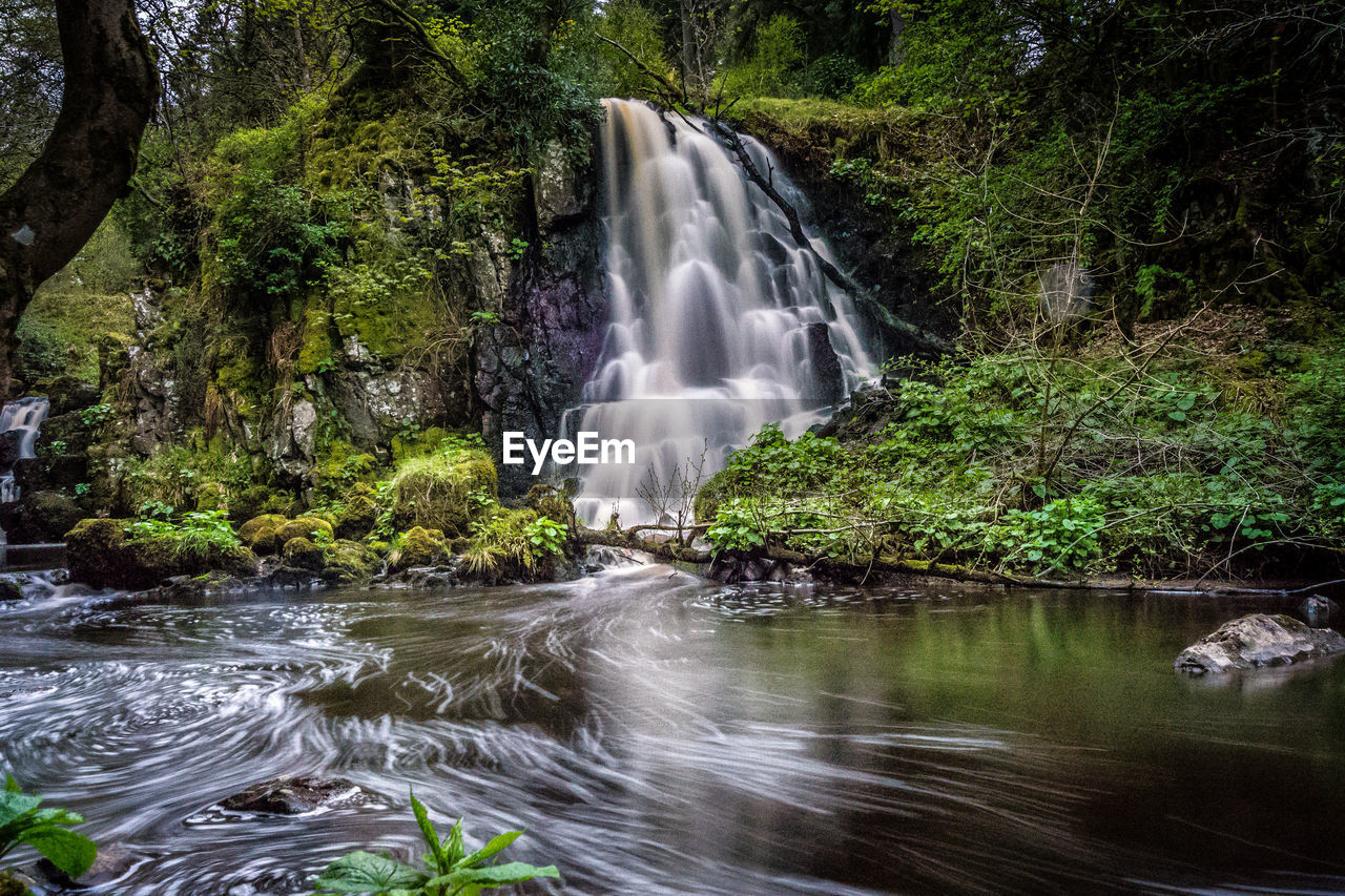 water, motion, long exposure, waterfall, forest, tree, beauty in nature, scenics - nature, flowing water, blurred motion, land, plant, nature, rock, rock - object, solid, river, flowing, environment, no people, outdoors, power in nature, rainforest, stream - flowing water, falling water, purity