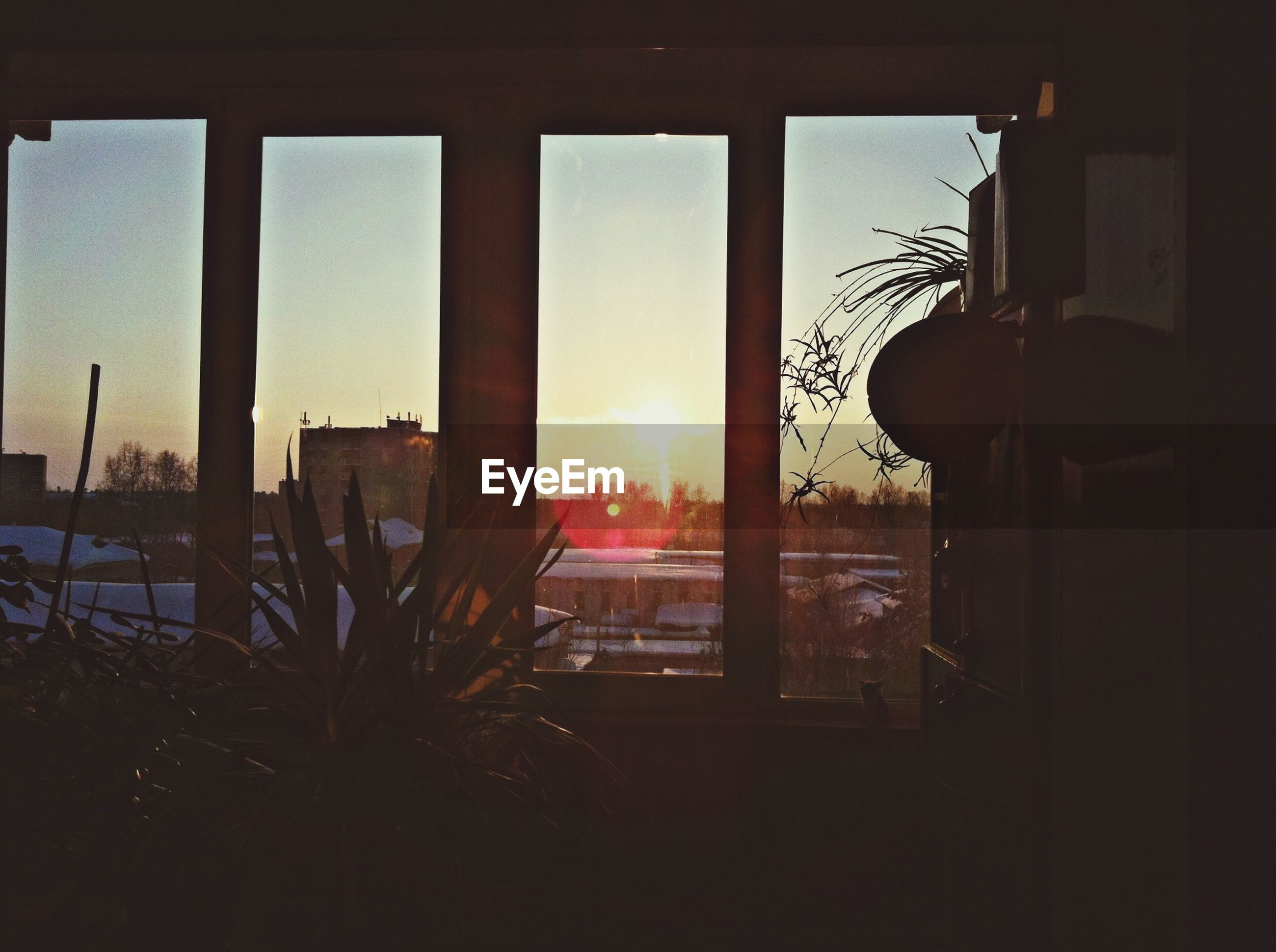 window, indoors, built structure, architecture, sunset, sunlight, silhouette, glass - material, building exterior, sun, transparent, house, home interior, sky, potted plant, city, looking through window, window sill, sunbeam, no people