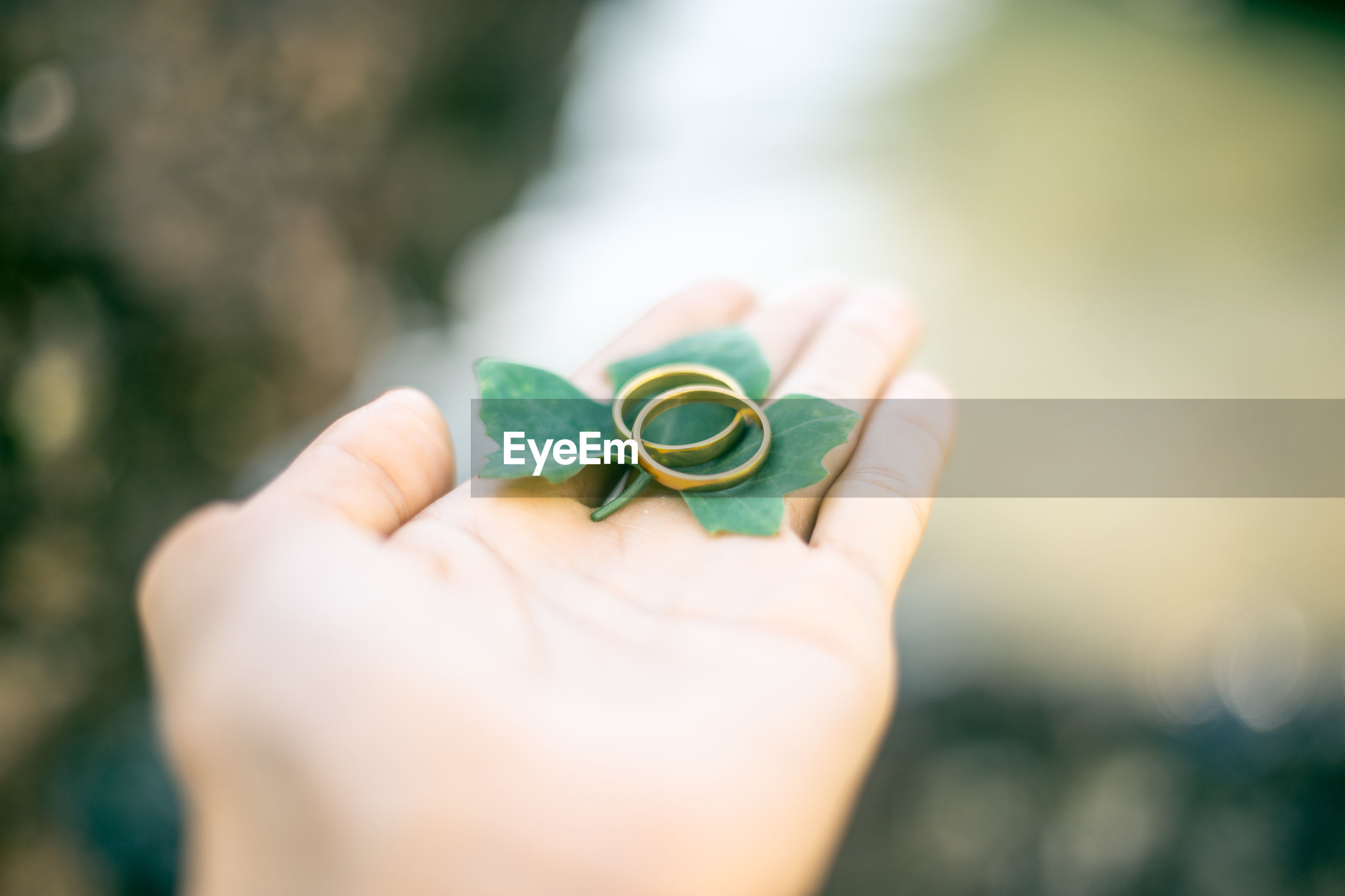 Close-up of cropped woman hand holding wedding rings with leaf