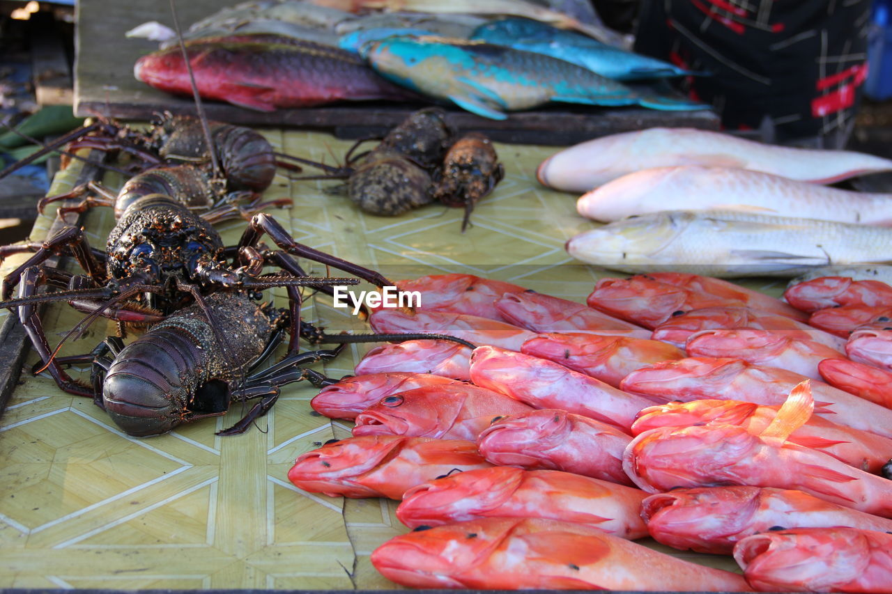 food and drink, seafood, food, freshness, crustacean, market, for sale, retail, wellbeing, raw food, healthy eating, no people, close-up, market stall, animal, fish, day, crab, still life, high angle view, sale, lobster, fish market, retail display