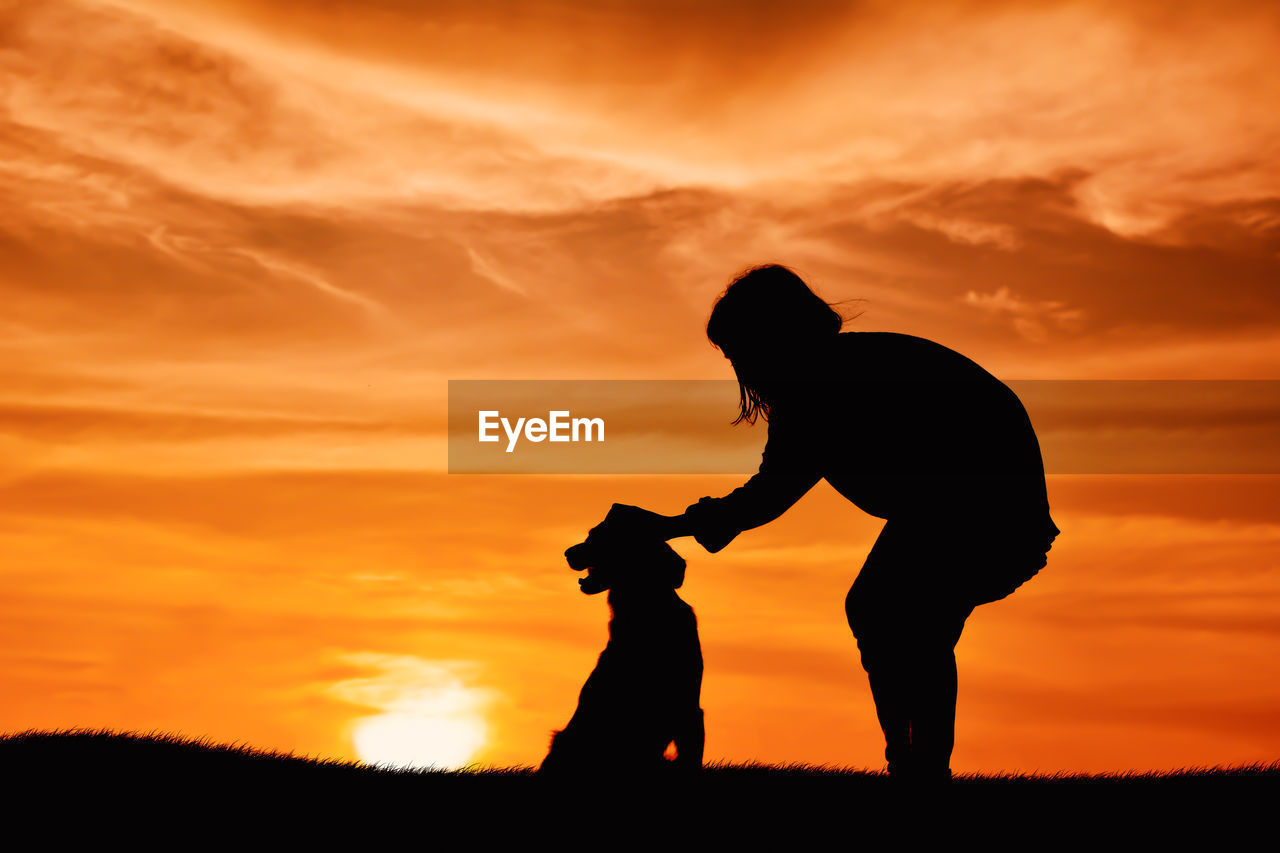 Silhouette Girl Petting Dog While Standing On Field Against Sky During Sunset
