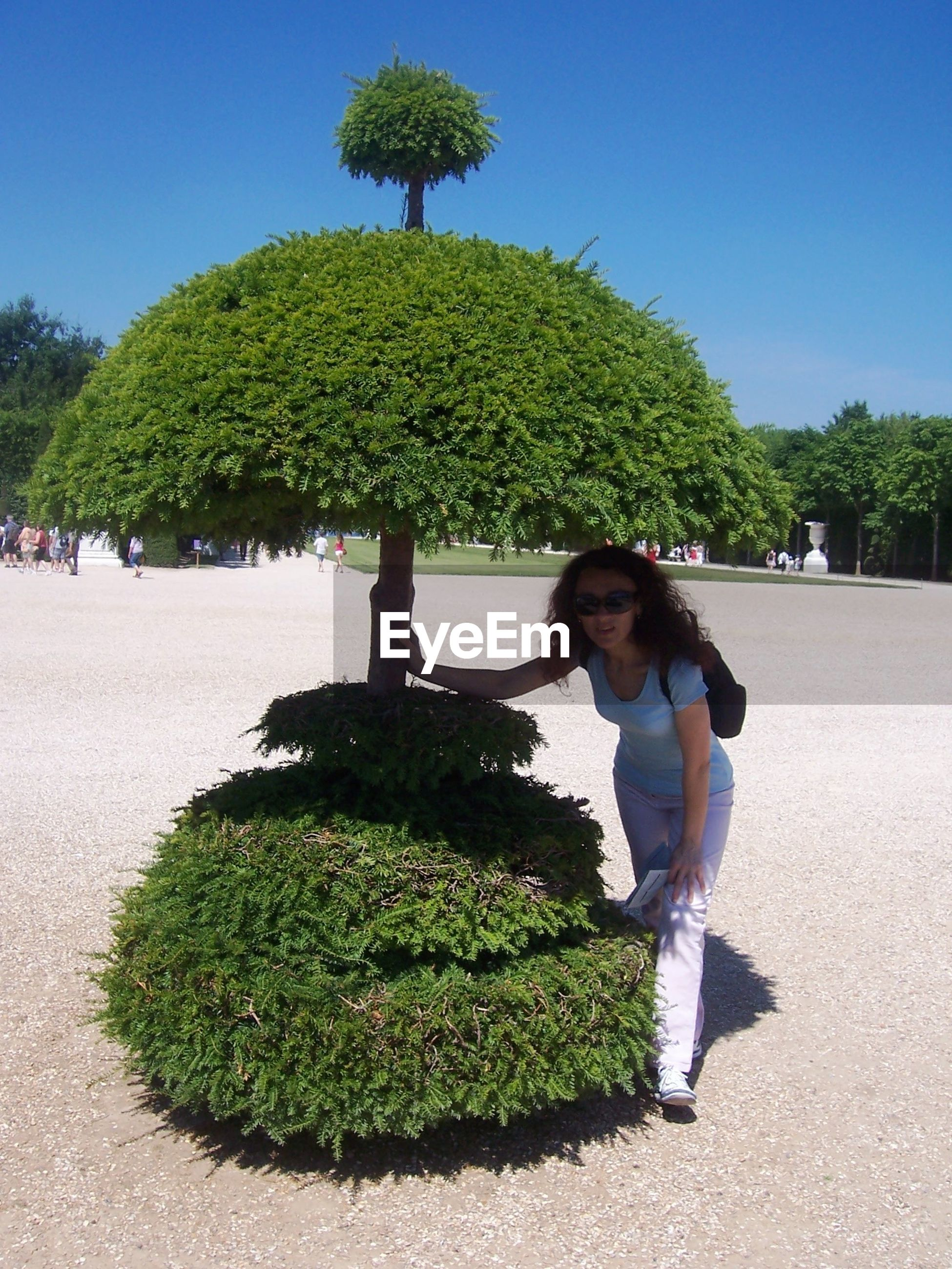 Woman wearing sunglasses standing by topiary tree at garden