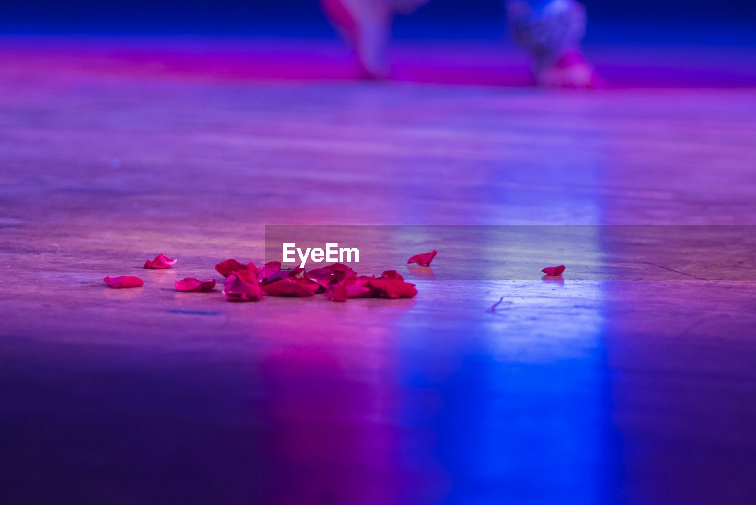 Petals on stage floor