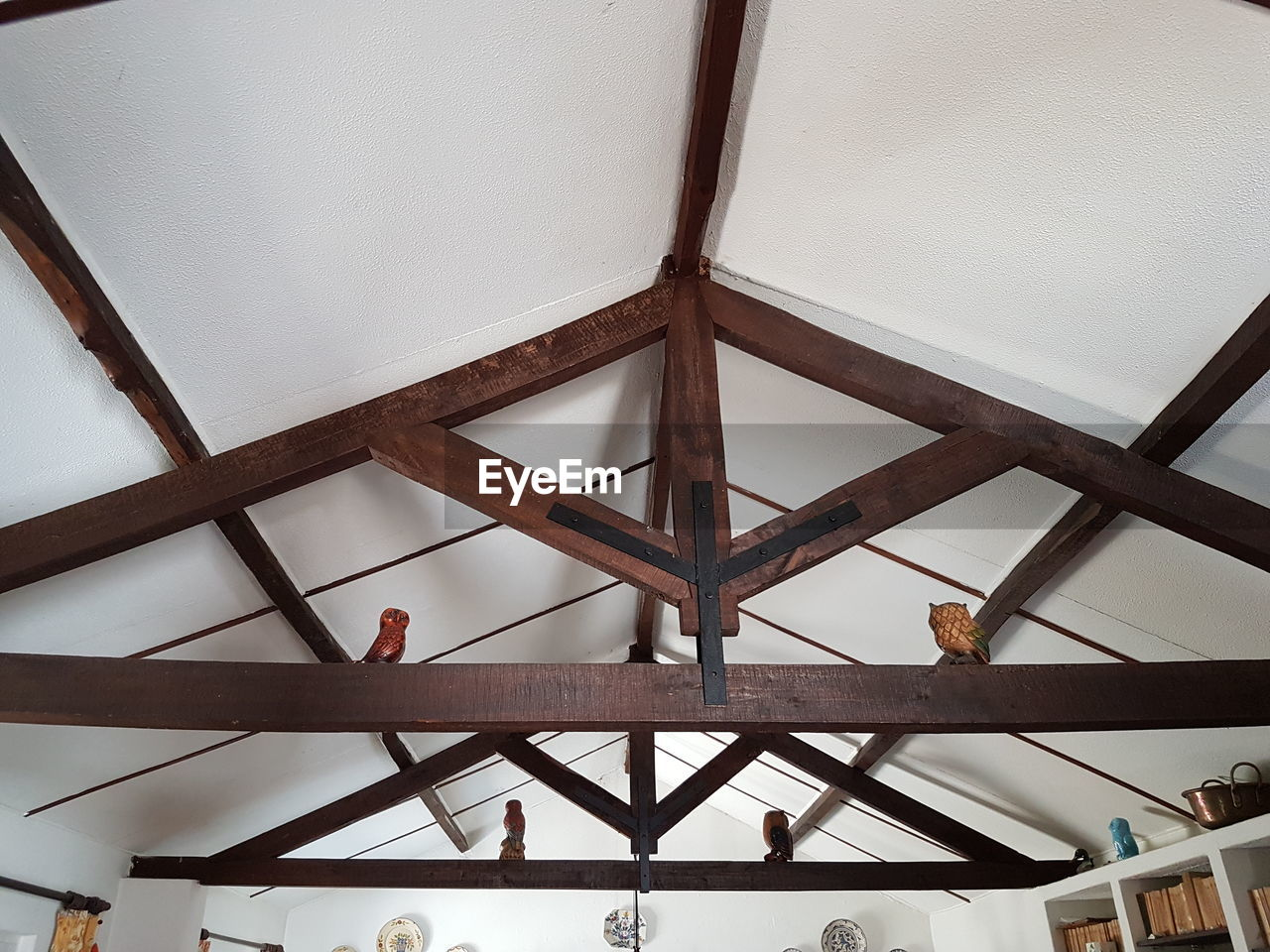 LOW ANGLE VIEW OF BIRD PERCHING ON CEILING
