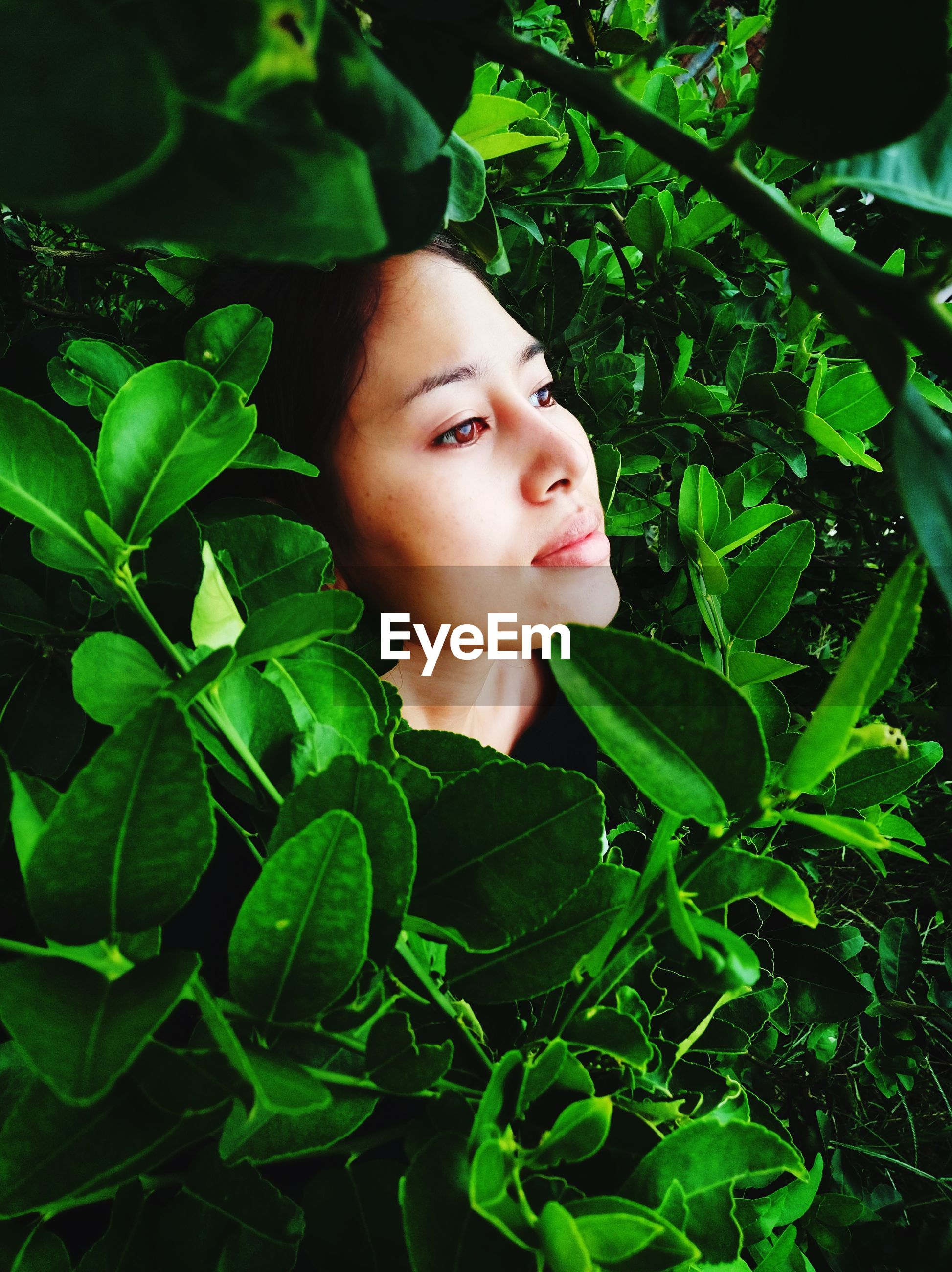 Woman looking away amidst plants