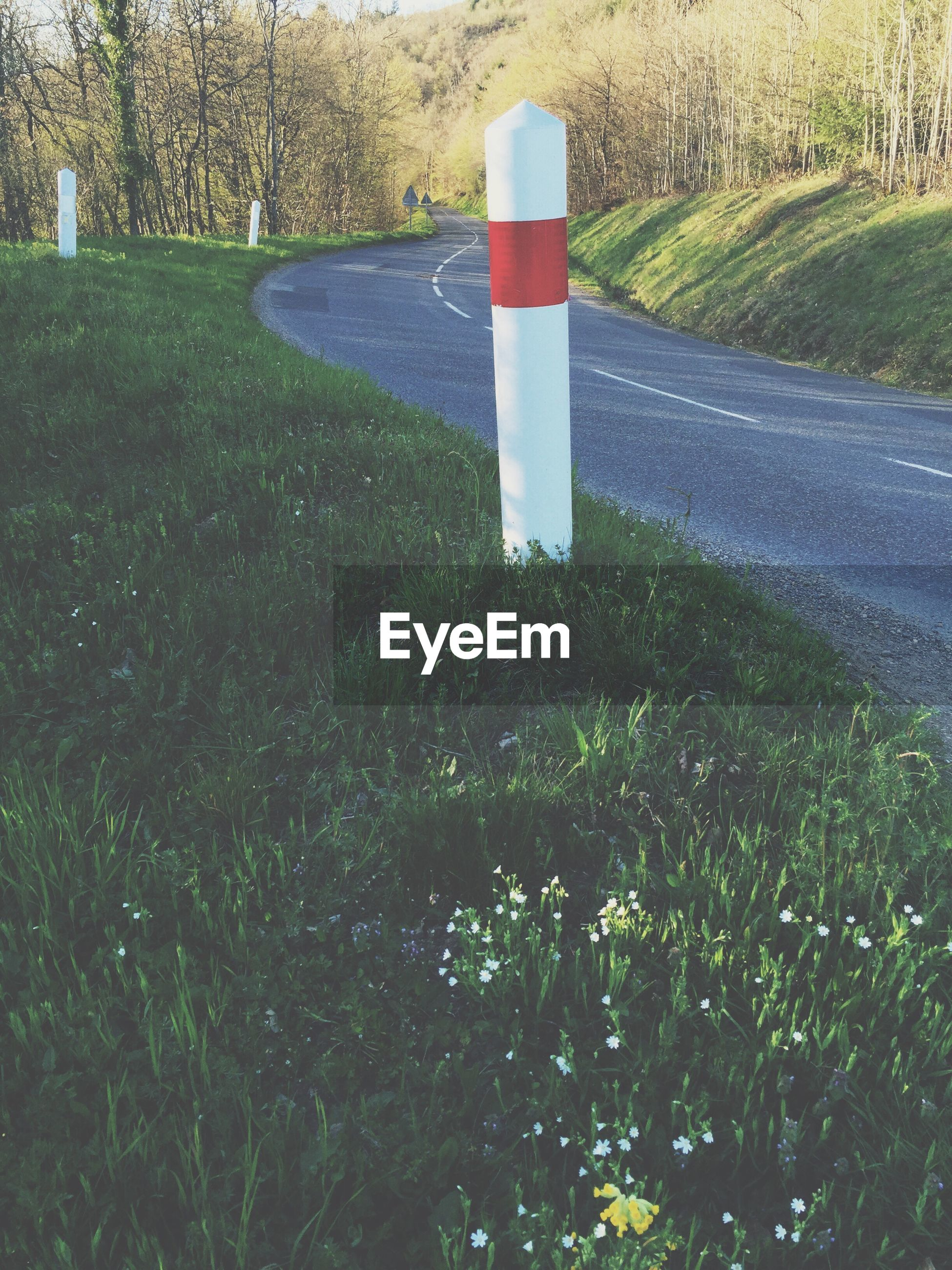 Wooden post on grassy field by road