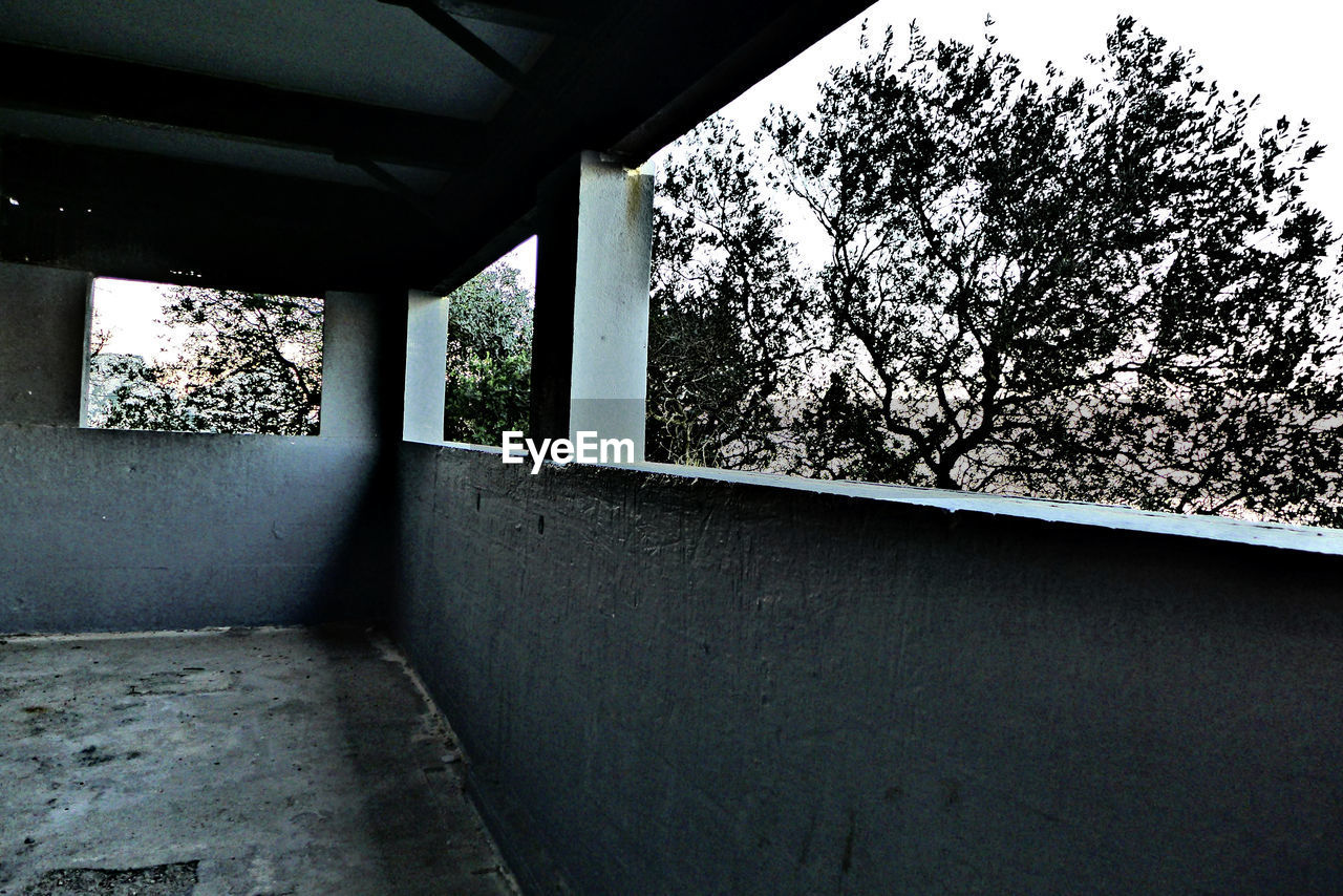 tree, day, built structure, architecture, no people, indoors, nature