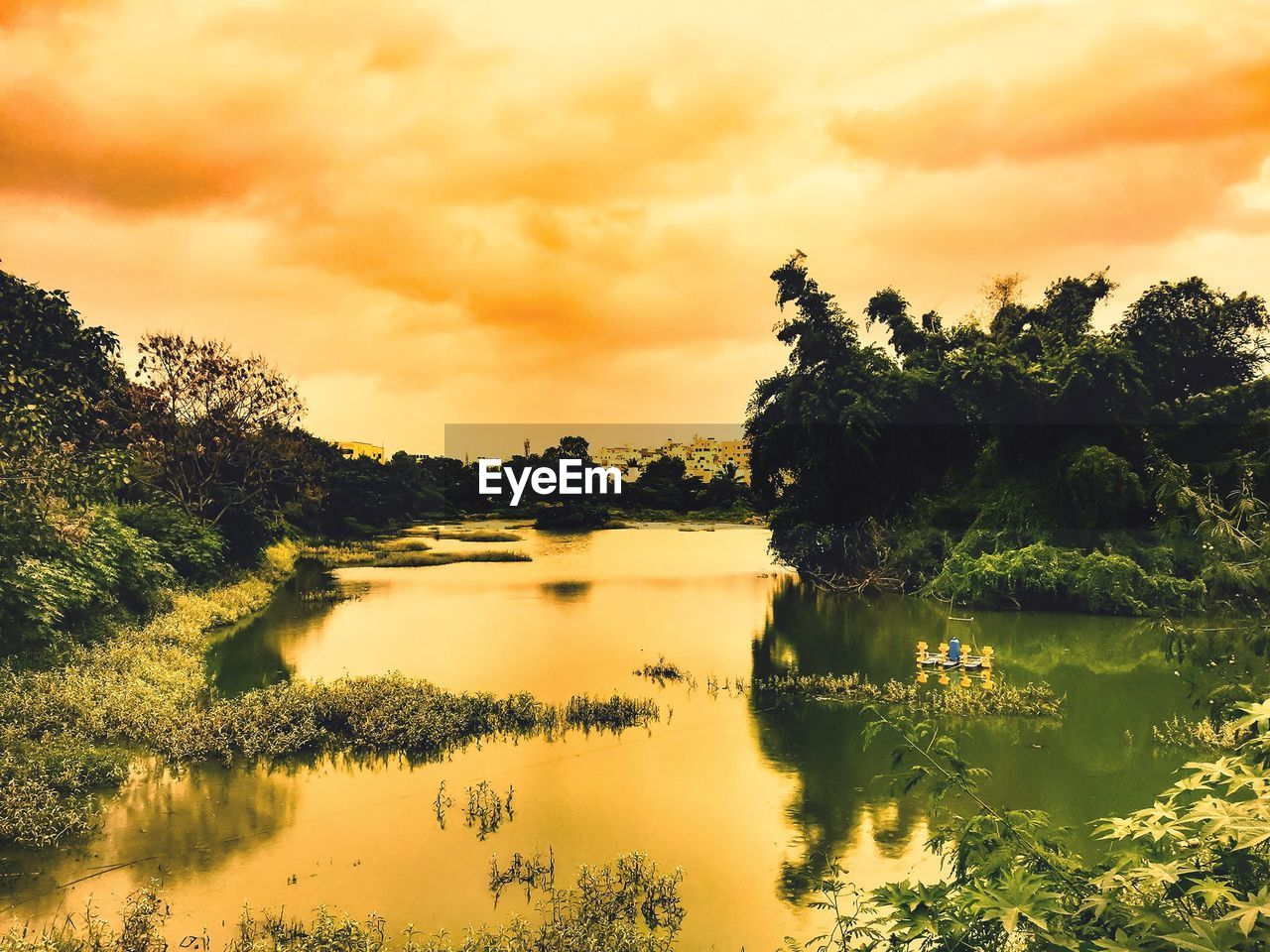 sky, water, tree, cloud - sky, tranquility, beauty in nature, sunset, tranquil scene, scenics - nature, plant, reflection, lake, nature, no people, idyllic, orange color, waterfront, non-urban scene, growth, reflection lake