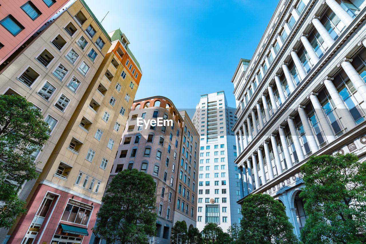 architecture, building exterior, built structure, building, sky, city, day, low angle view, plant, no people, nature, tree, residential district, window, outdoors, clear sky, office, tall - high, sunlight, office building exterior, apartment