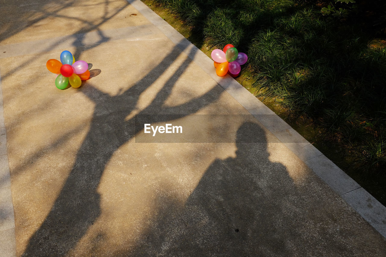 High Angle View Of Person With Shadow On Ground