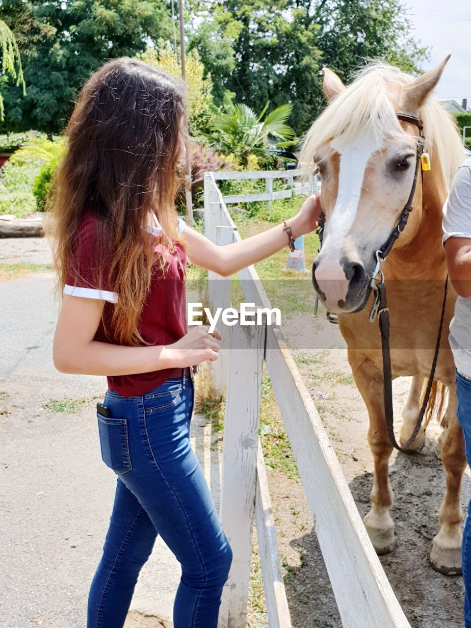 Young Woman Touching Horse While Standing In Ranch