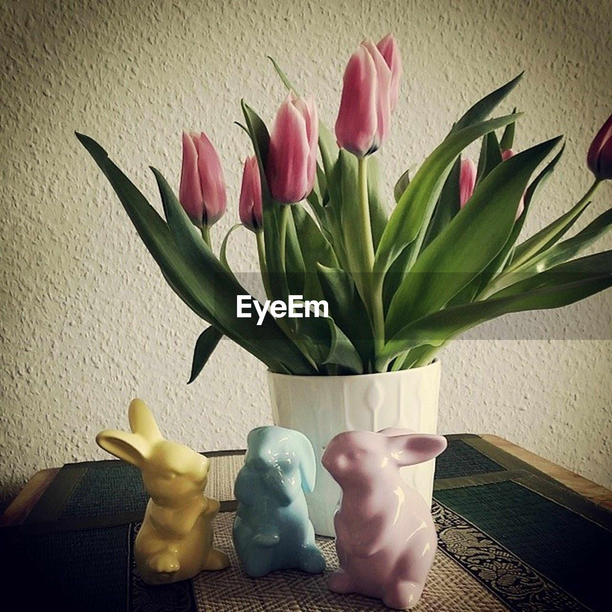 flower, indoors, freshness, vase, petal, fragility, flower head, table, tulip, flower arrangement, leaf, potted plant, pink color, wall - building feature, home interior, plant, rose - flower, bouquet, stem, growth