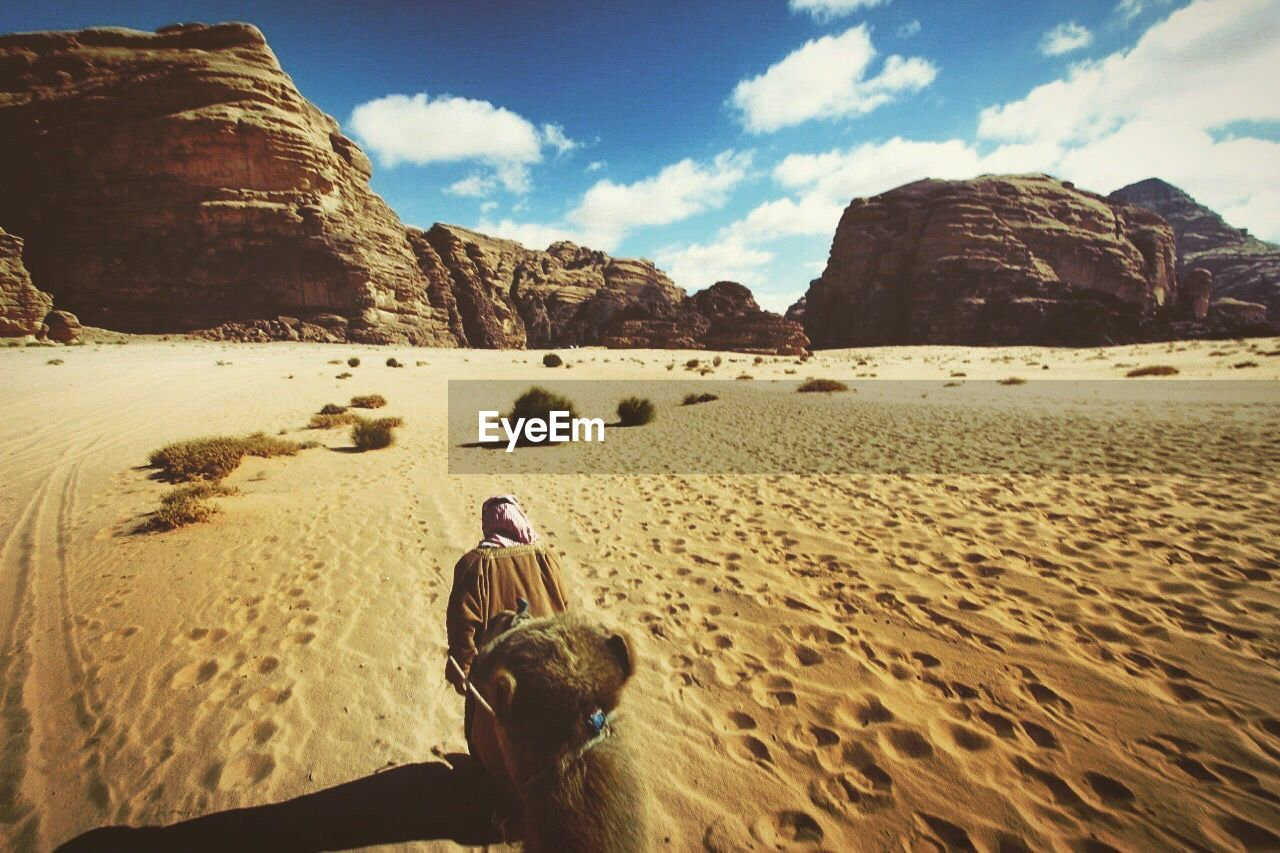 Rear view of man walking with camel in wadi rum
