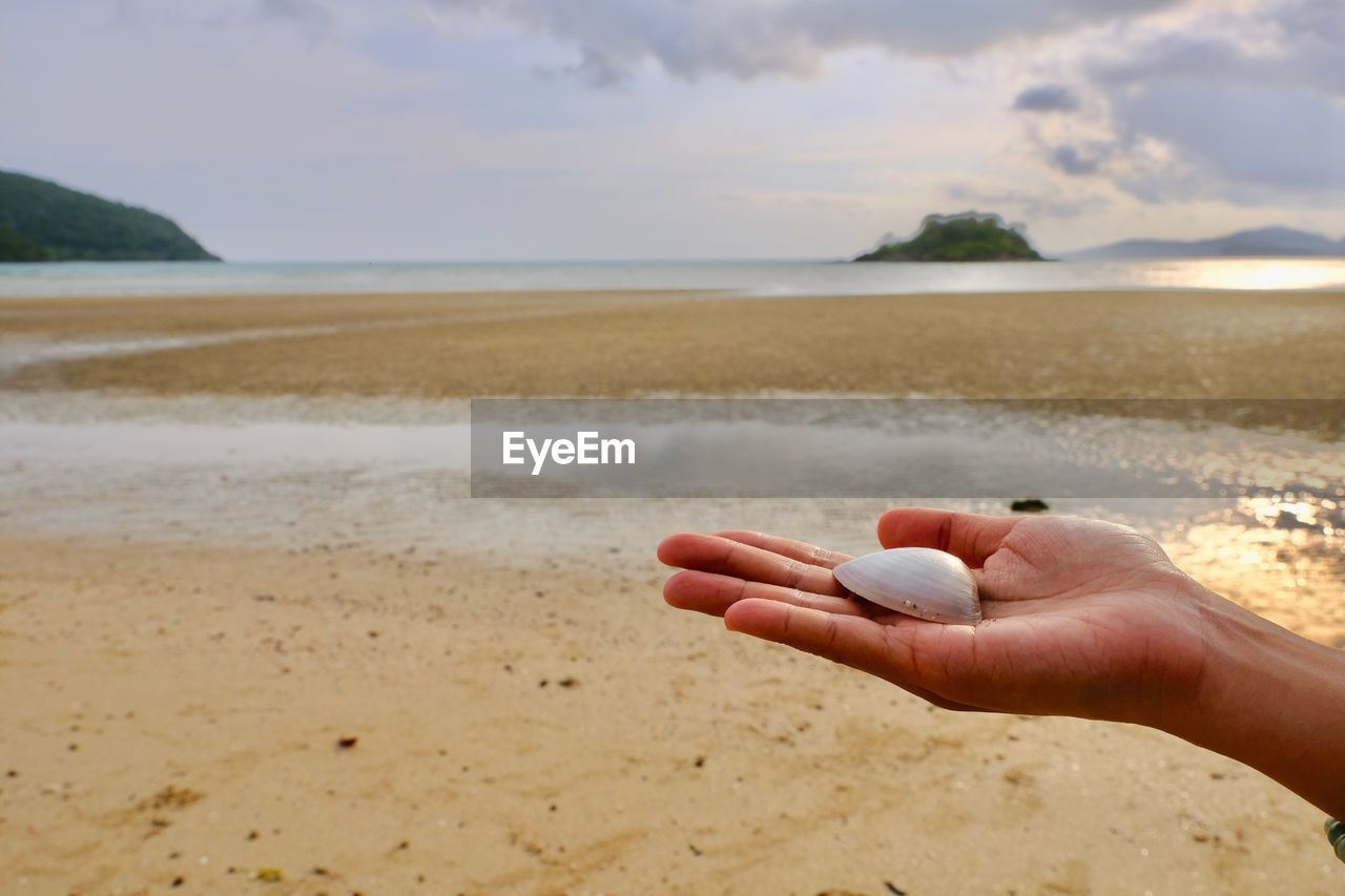 human hand, hand, sea, water, human body part, land, sky, beach, one person, holding, sand, real people, nature, horizon over water, beauty in nature, scenics - nature, horizon, day, lifestyles, finger, body part, outdoors