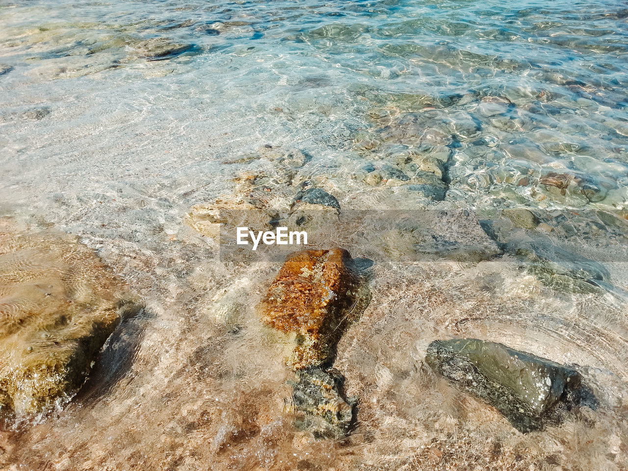 water, sea, nature, high angle view, land, beach, no people, day, beauty in nature, rock, outdoors, rock - object, solid, tranquility, sand, animal, motion, animal wildlife, idyllic, shallow, marine