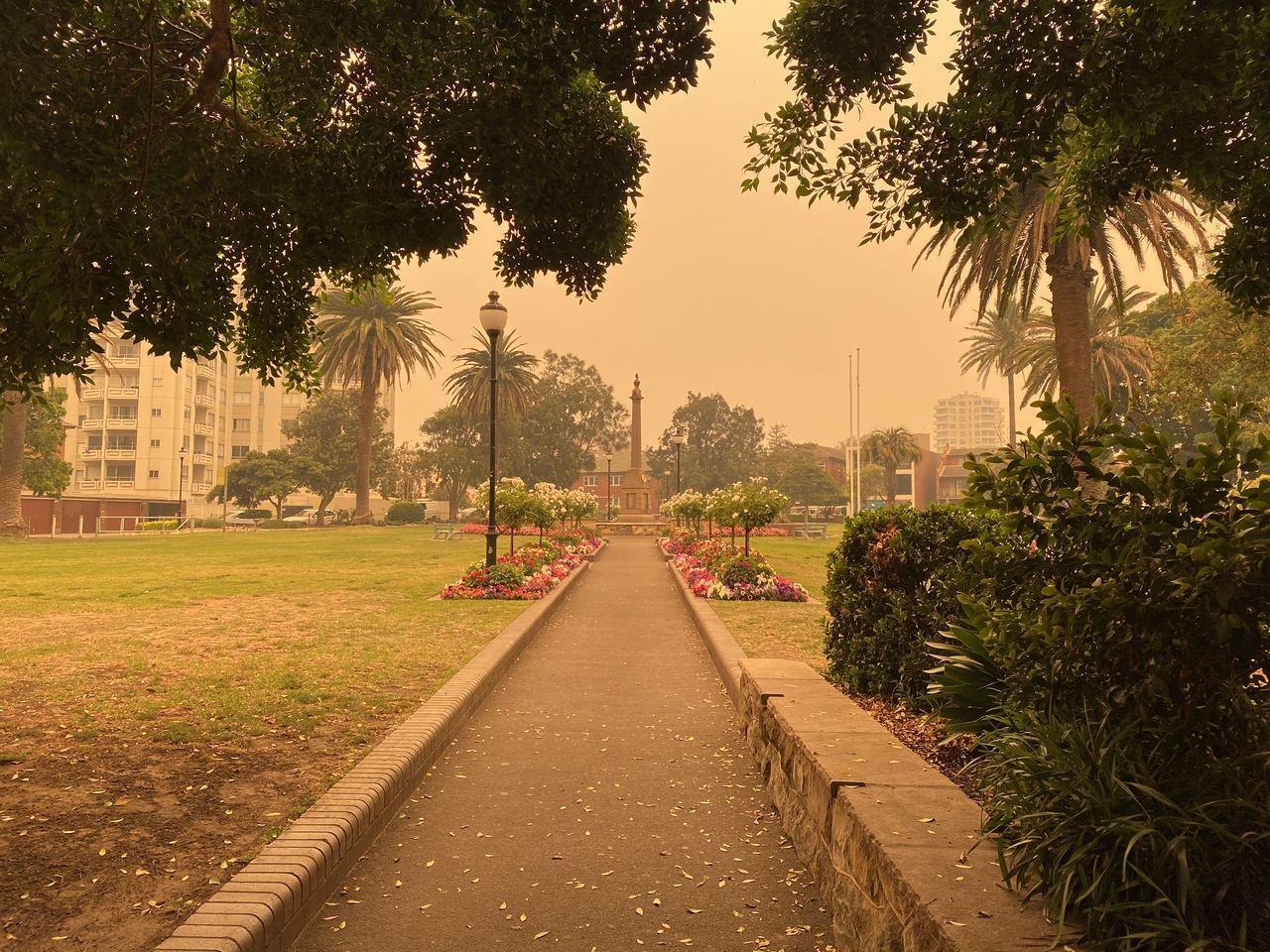 Footpath amidst trees in city against sky