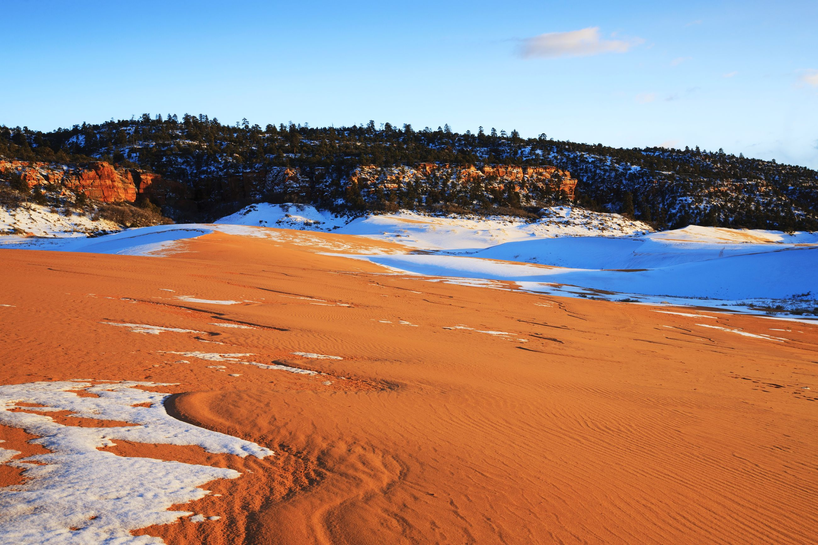Scenic view of desert during winter