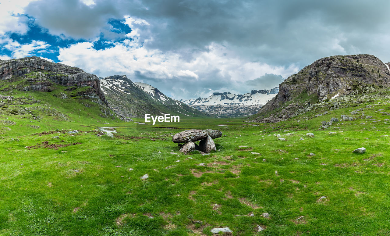 cloud - sky, mountain, sky, beauty in nature, green color, scenics - nature, animal, animal themes, mammal, nature, grass, tranquil scene, non-urban scene, one animal, plant, environment, day, landscape, tranquility, no people, mountain range, outdoors