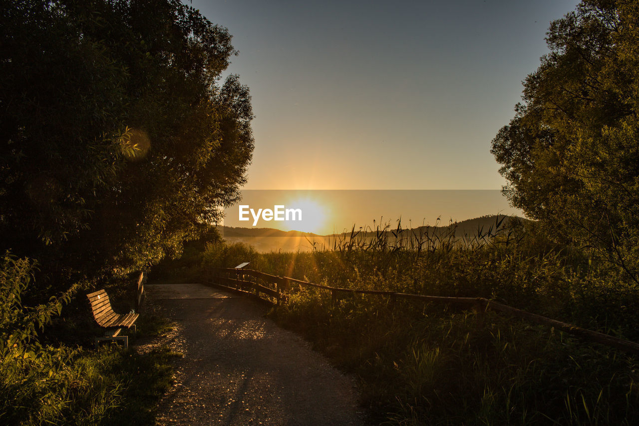 plant, tree, sky, sunset, sunlight, beauty in nature, nature, sun, tranquility, tranquil scene, growth, scenics - nature, no people, lens flare, footpath, outdoors, direction, the way forward, non-urban scene, road, bright