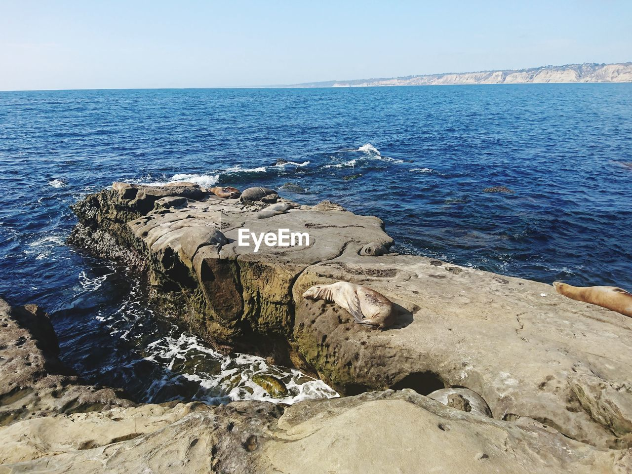 sea, water, beauty in nature, horizon over water, scenics - nature, horizon, sky, rock, rock - object, blue, day, nature, tranquil scene, no people, land, solid, non-urban scene, tranquility, idyllic, outdoors, rocky coastline