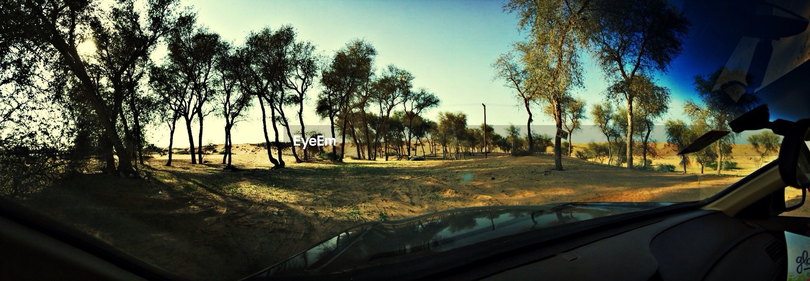 Scenic view of trees on landscape viewed through windshield of car