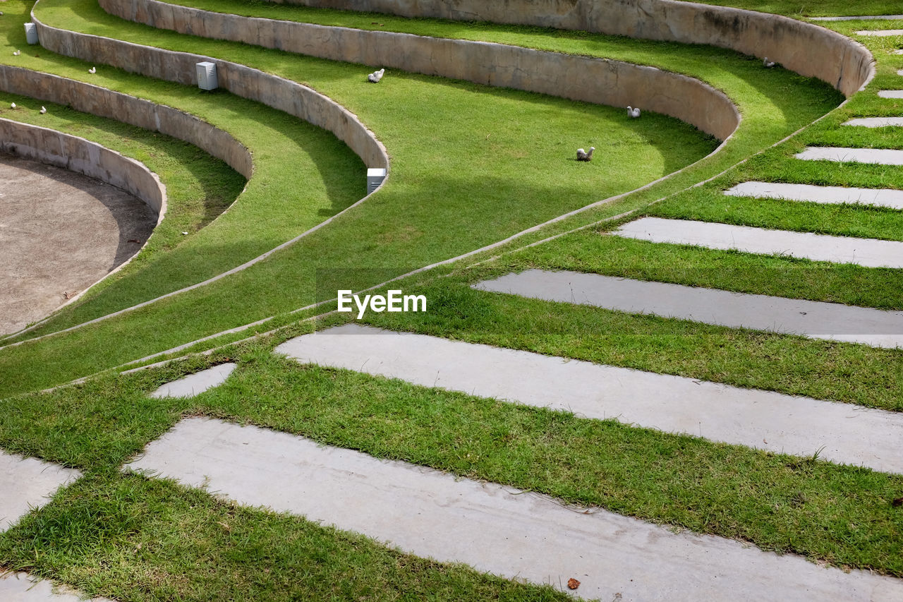 View Of Green Grass