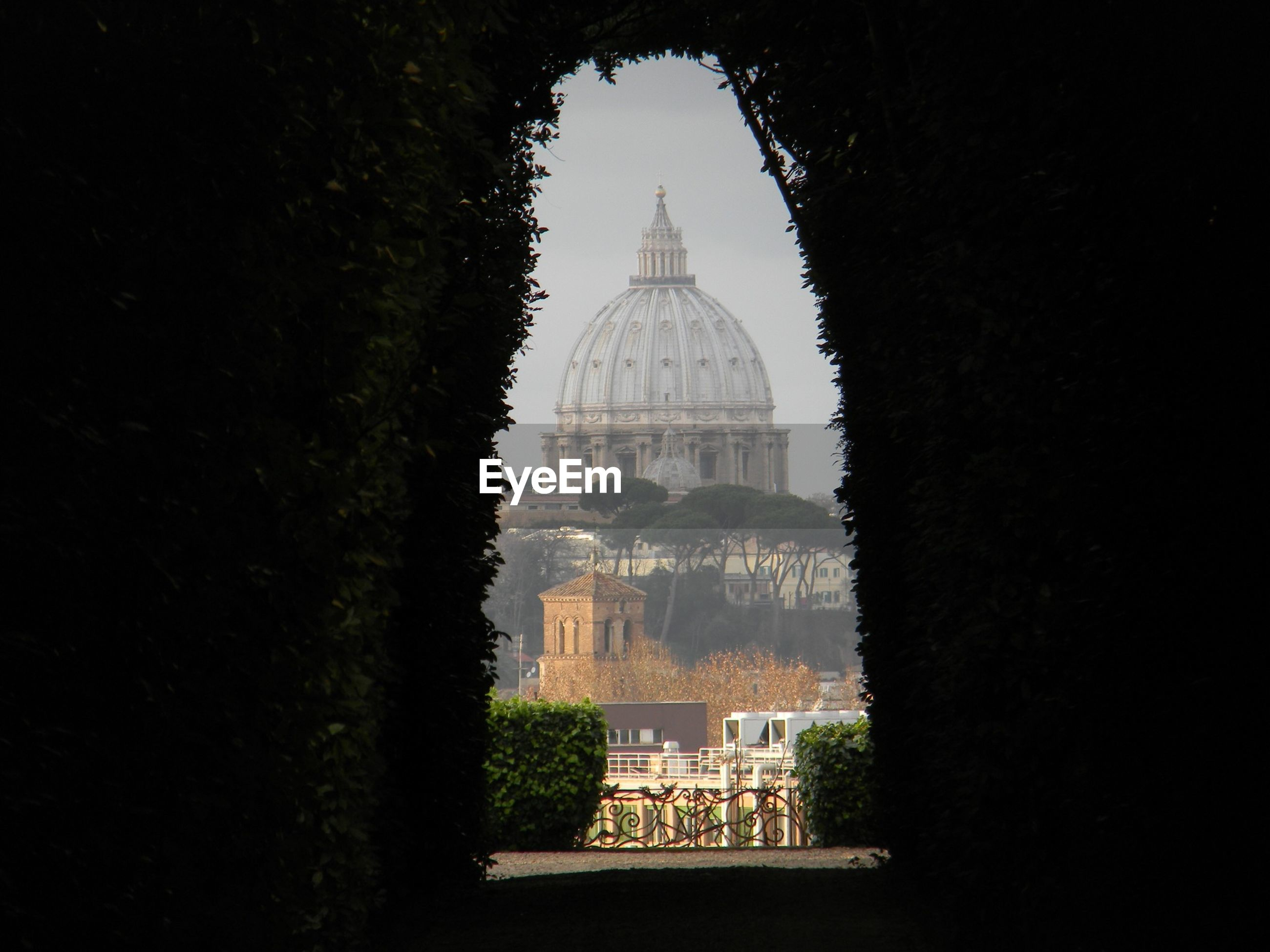 St peters basilica seen through archway made by trees