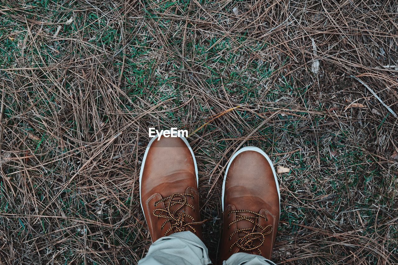 Directly above view of man wearing brown leather shoes on grass field