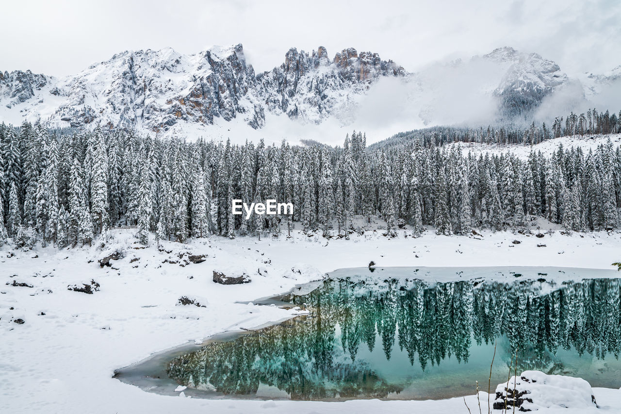 winter, cold temperature, snow, beauty in nature, tree, scenics - nature, plant, tranquil scene, tranquility, mountain, nature, sky, non-urban scene, white color, no people, water, day, environment, covering, snowcapped mountain, outdoors, pine tree, powder snow