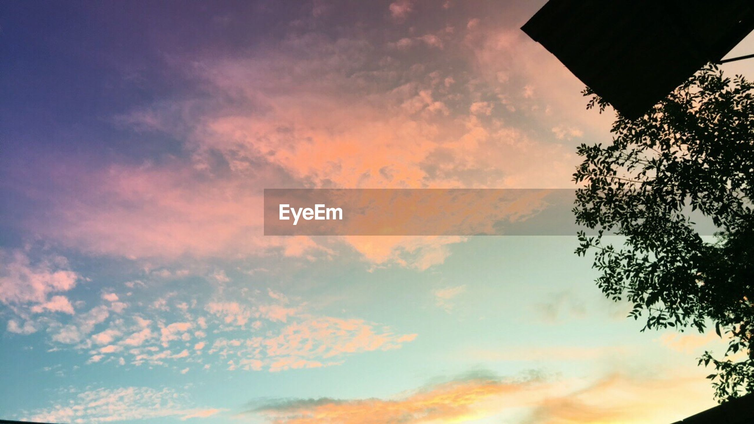 sky, cloud - sky, nature, sunset, low angle view, beauty in nature, tranquility, tree, scenics, no people, outdoors, tranquil scene, day