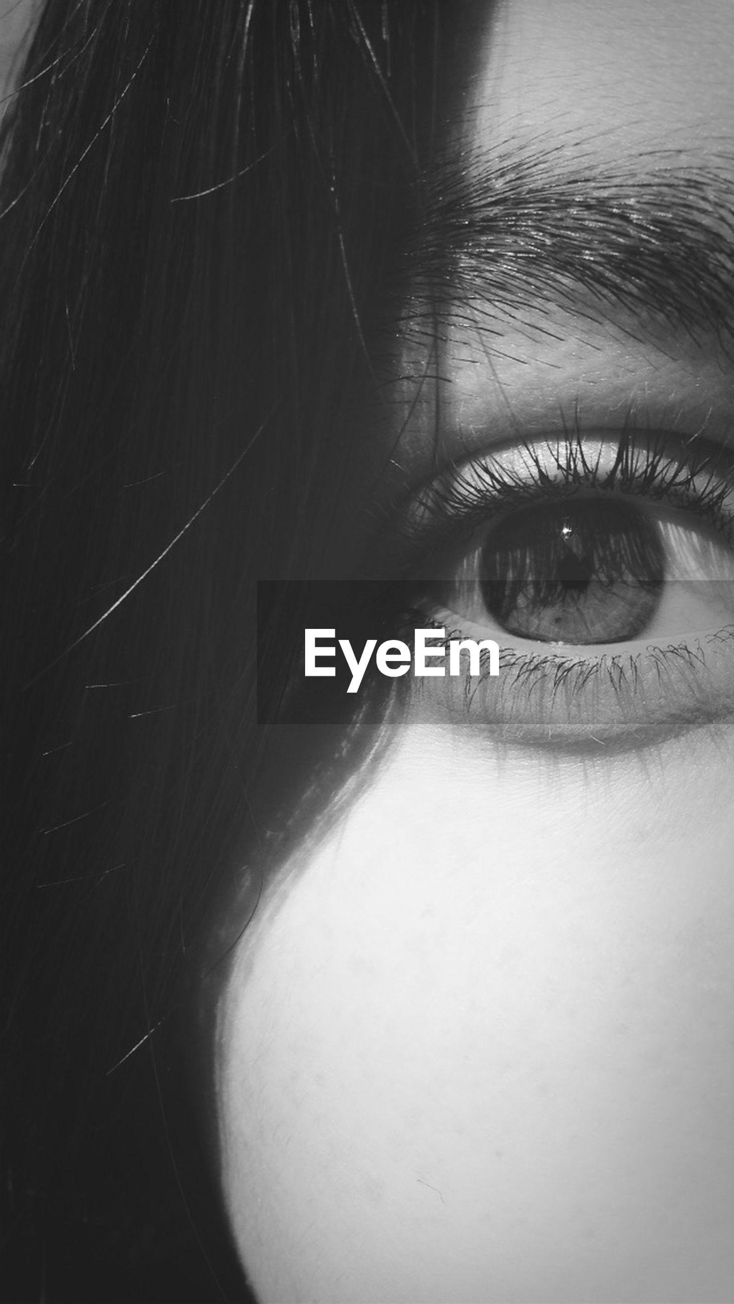 human eye, close-up, human face, headshot, eyelash, eyesight, looking at camera, portrait, lifestyles, part of, human skin, young adult, sensory perception, person, reflection, studio shot, indoors