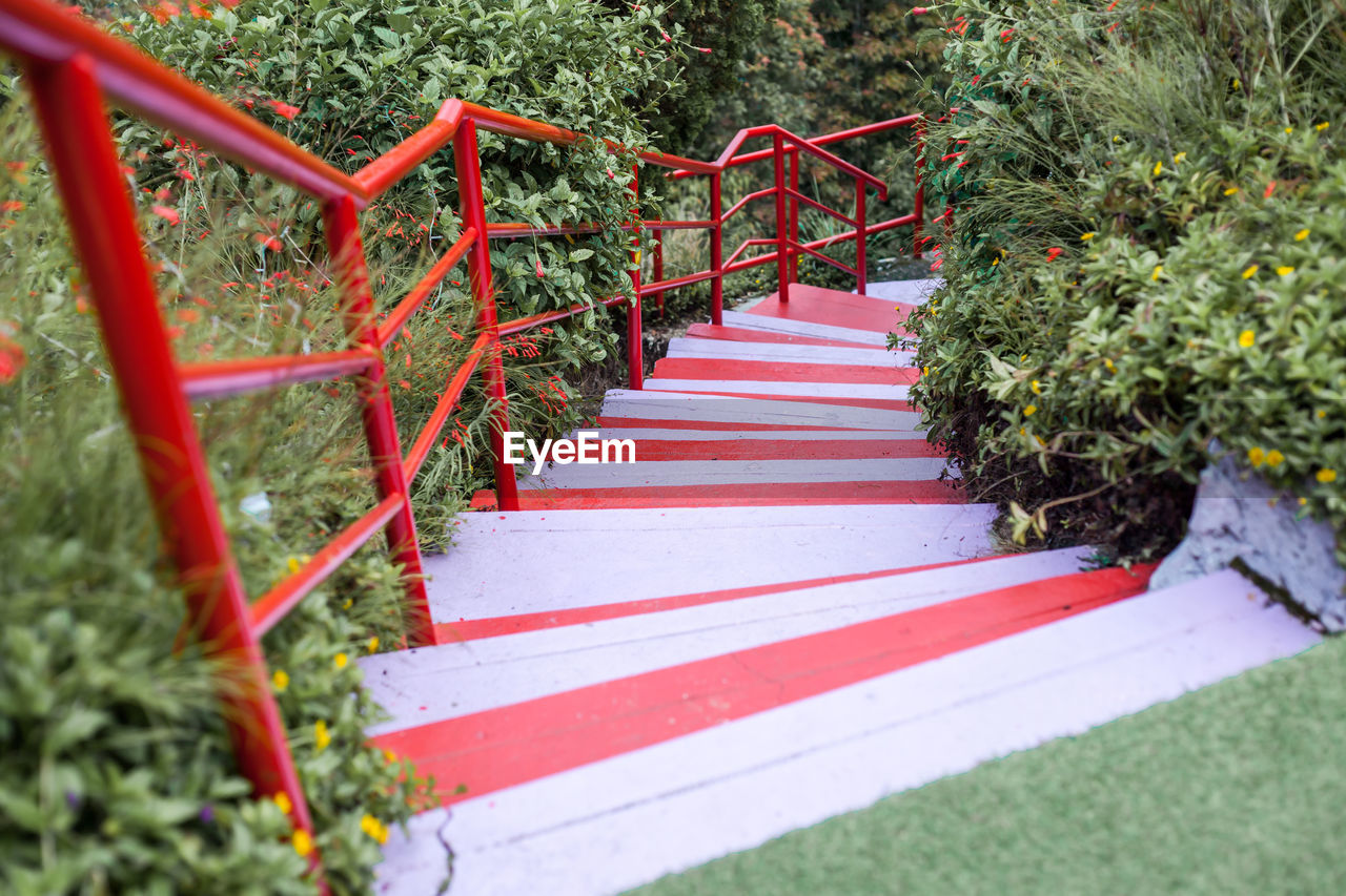 red, plant, railing, no people, day, direction, staircase, nature, the way forward, growth, tree, selective focus, metal, outdoors, grass, footpath, land, barrier, architecture, park - man made space