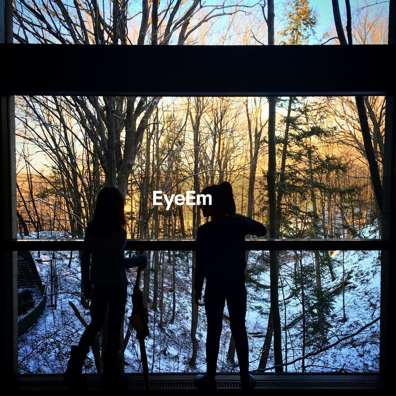 Silhouette friend standing in balcony by snow covered forest