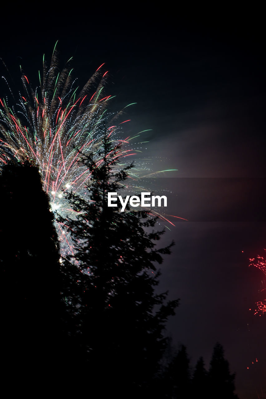 night, celebration, firework, exploding, motion, illuminated, firework display, sky, event, long exposure, glowing, low angle view, arts culture and entertainment, nature, blurred motion, no people, light, multi colored, firework - man made object, plant, outdoors, sparks, dark, festival, explosive