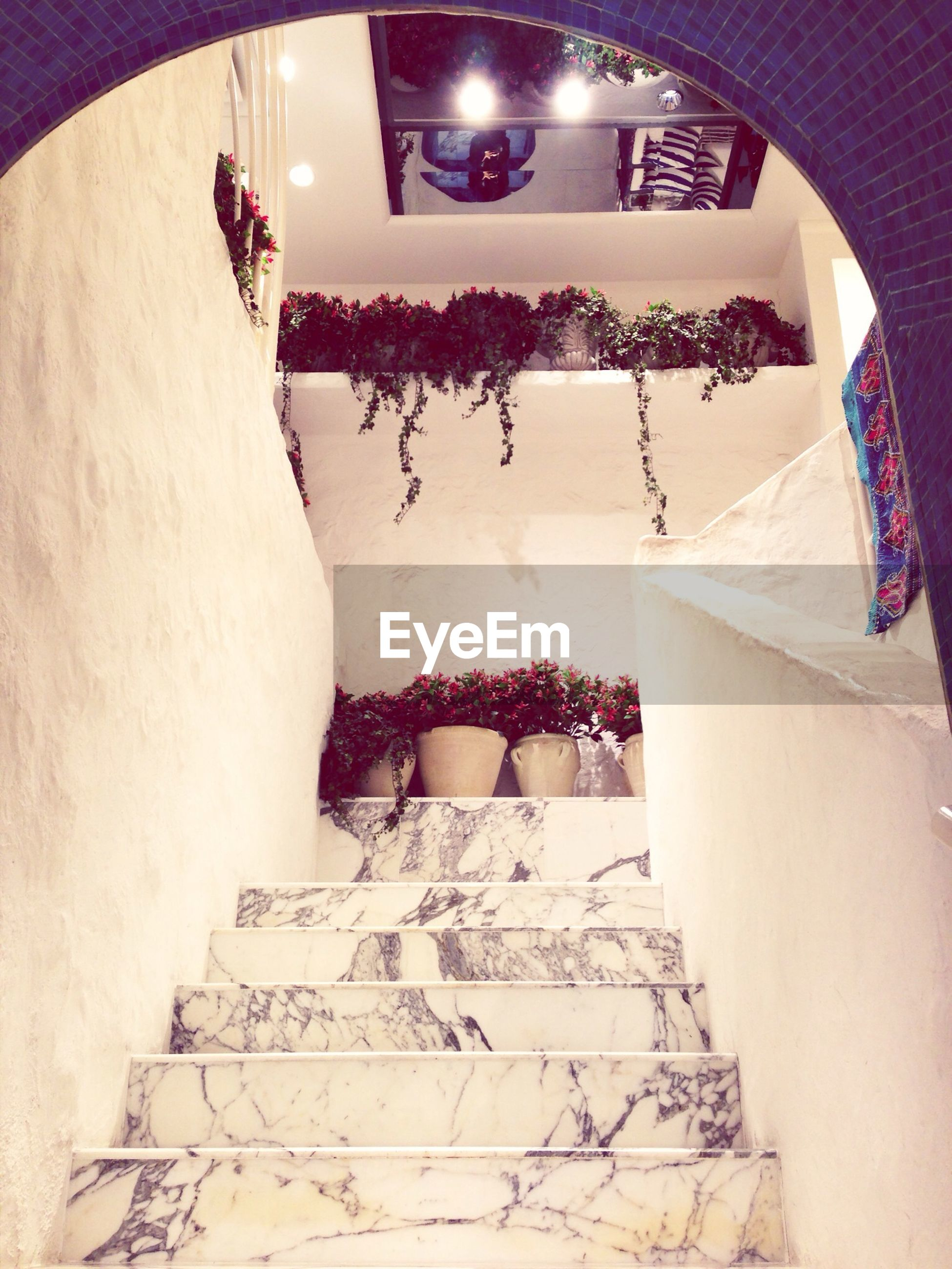 architecture, built structure, low angle view, indoors, wall - building feature, building exterior, steps, steps and staircases, staircase, wall, building, lighting equipment, no people, ceiling, art, decoration, house, art and craft, day, creativity