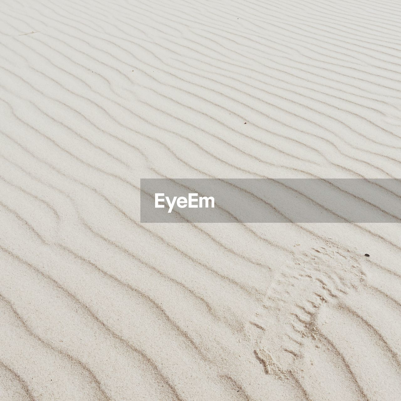 Full frame of natural pattern with footprint on beach sand