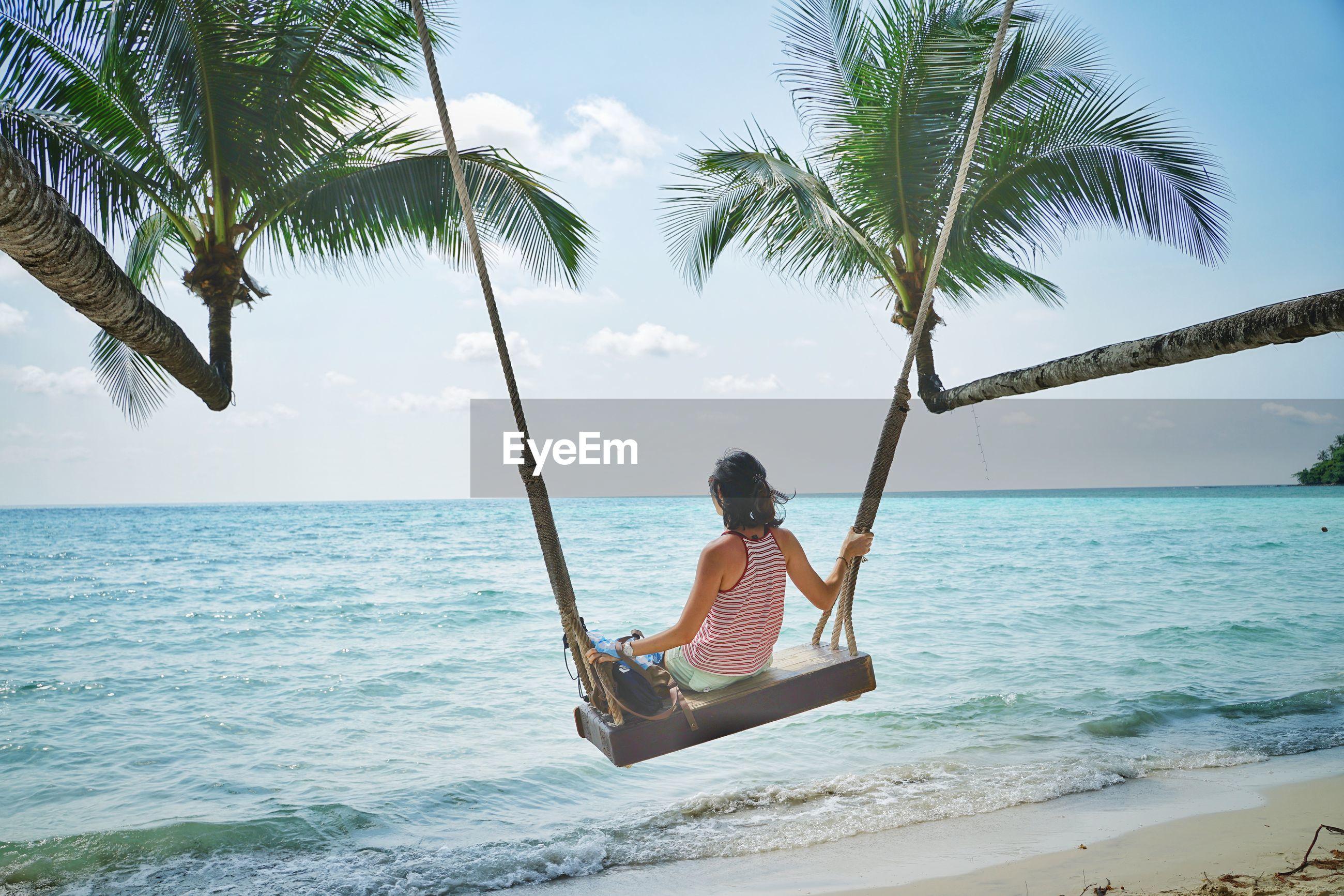 Coconut tree swing