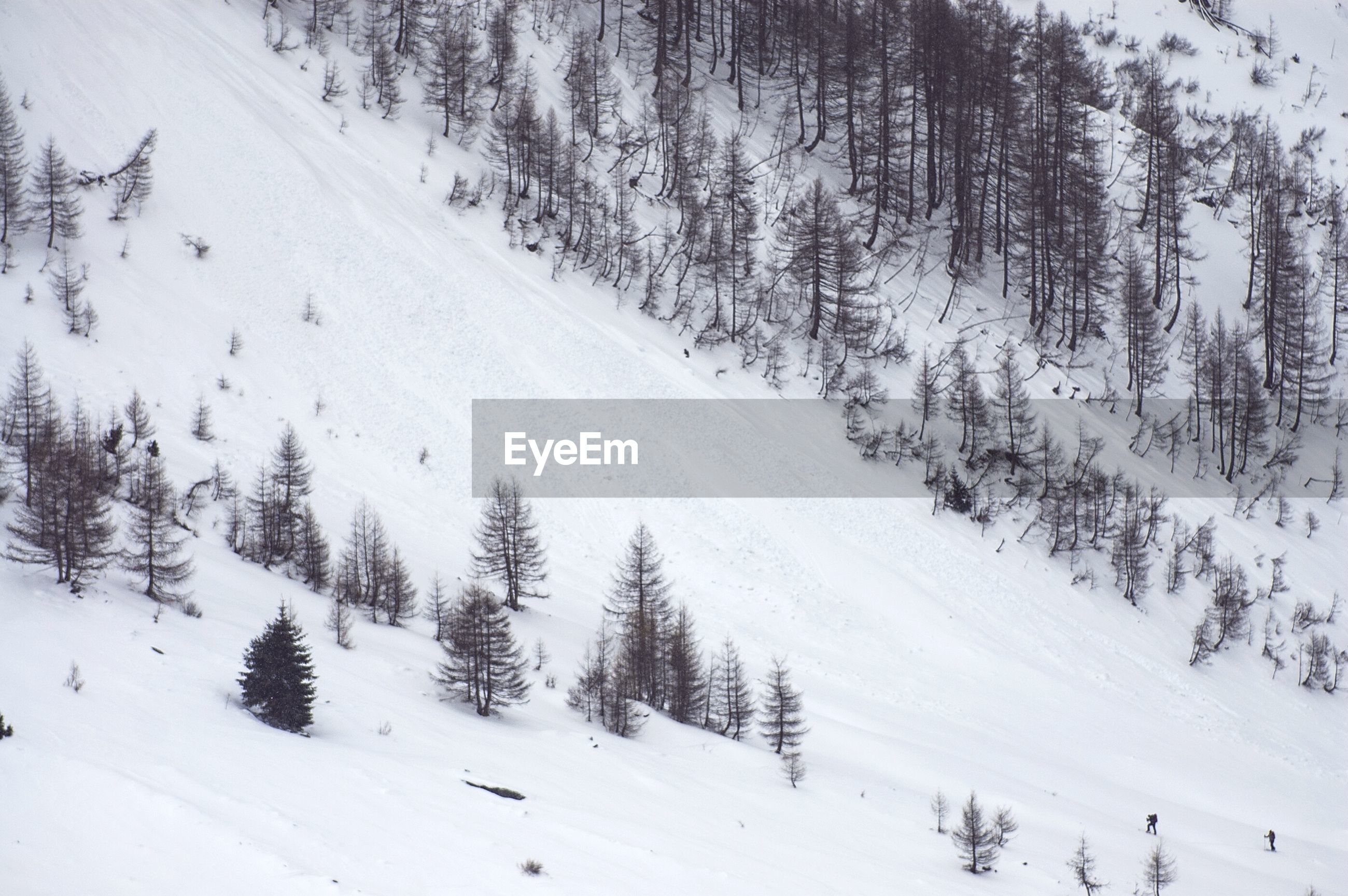 Snow covered mountain slope