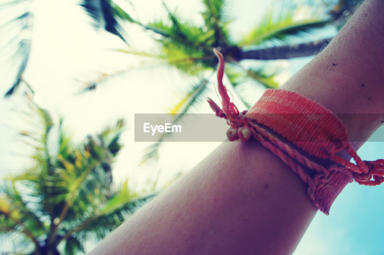 Cropped image of hand with bracelet against palm trees