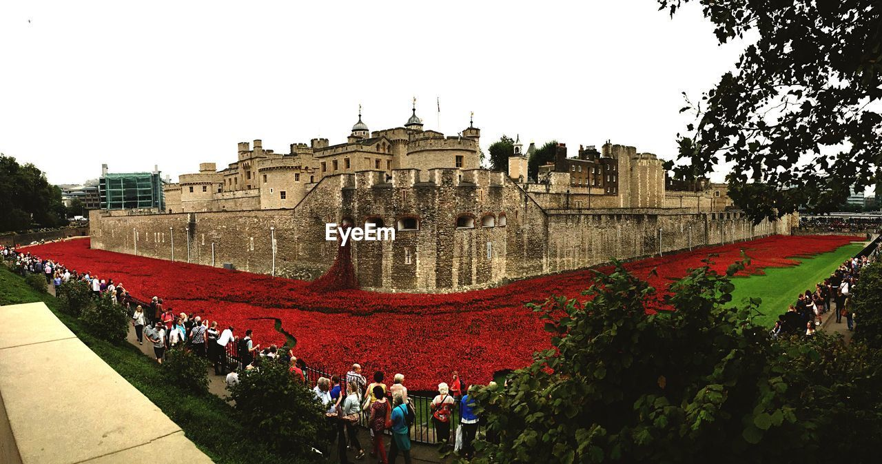 Group of people surrounding the tower of london covered in poppies