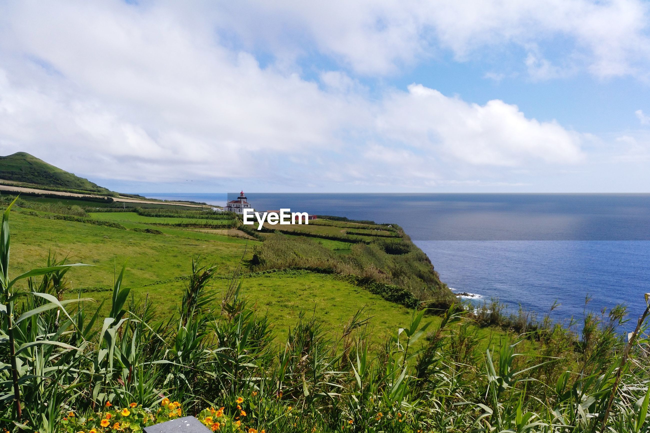 SCENIC VIEW OF SEA AND SHORE AGAINST SKY
