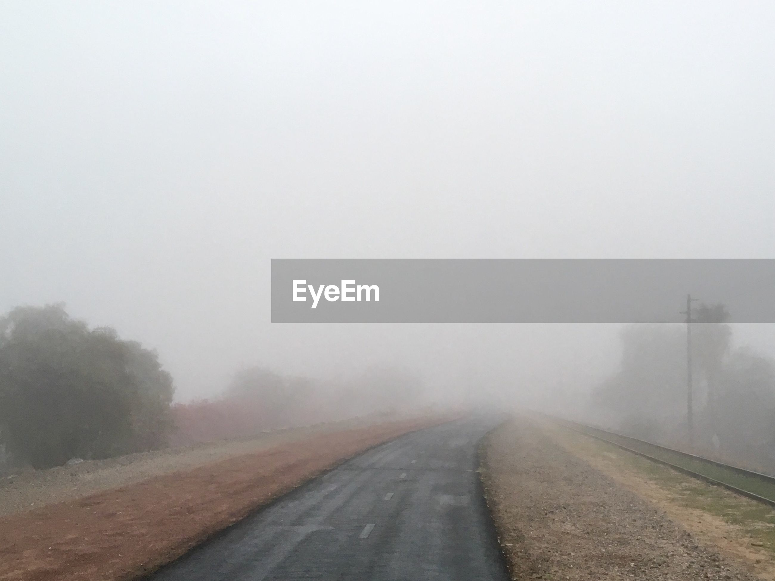 fog, road, transportation, direction, the way forward, sky, nature, copy space, day, no people, outdoors, beauty in nature, diminishing perspective, tranquility, plant, environment, winter, vanishing point, cold temperature