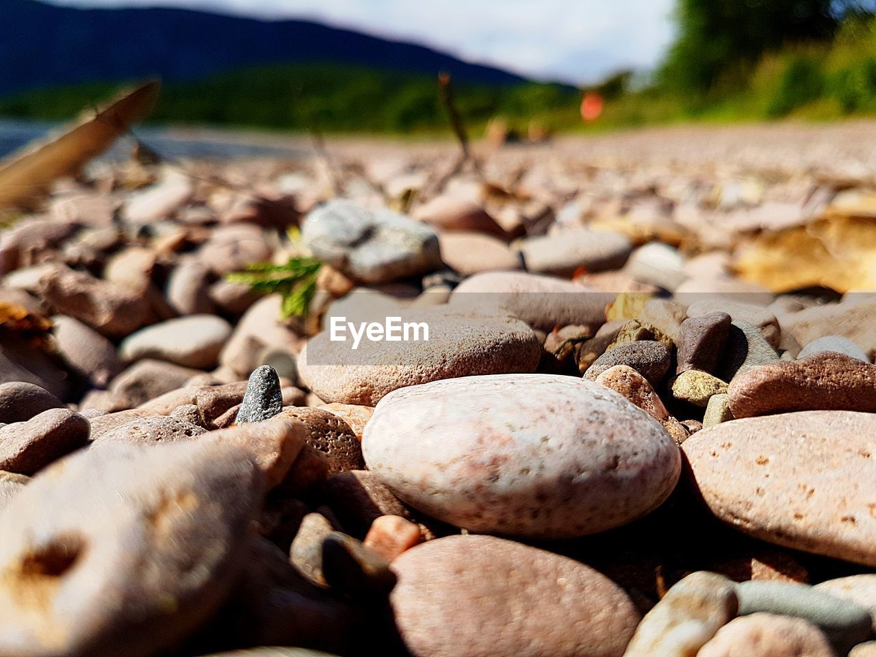 beach, nature, outdoors, day, shore, surface level, no people, pebble beach, pebble, beauty in nature, tranquility, sand, close-up, water, sky