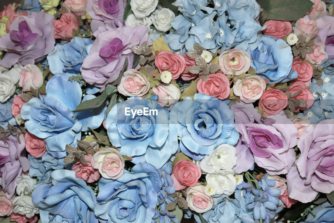 flower, flowering plant, rose, rose - flower, plant, beauty in nature, close-up, no people, vulnerability, fragility, flower head, freshness, full frame, nature, pink color, petal, large group of objects, abundance, inflorescence, multi colored, flower arrangement, bouquet, floral pattern, bunch of flowers