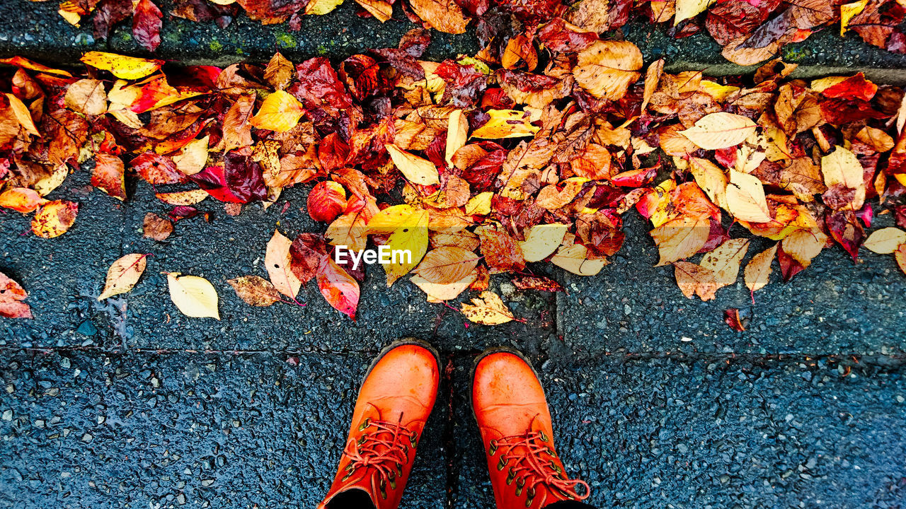 Low section of person wearing boots standing on footpath covered with autumn leaves